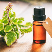 Beauty Benefits of Tea Tree Oil