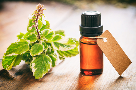 Beauty Benefits of Tea Tree Oil